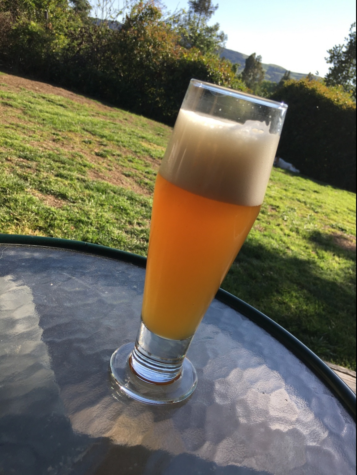 https://picobrewcontent.blob.core.windows.net/brewmarketplace/Beer/Gallery/3B1CE7587E8444D18D044EBE0C5CA2A6/Nesto%2527s Weizen?lastmod=636555376380000000