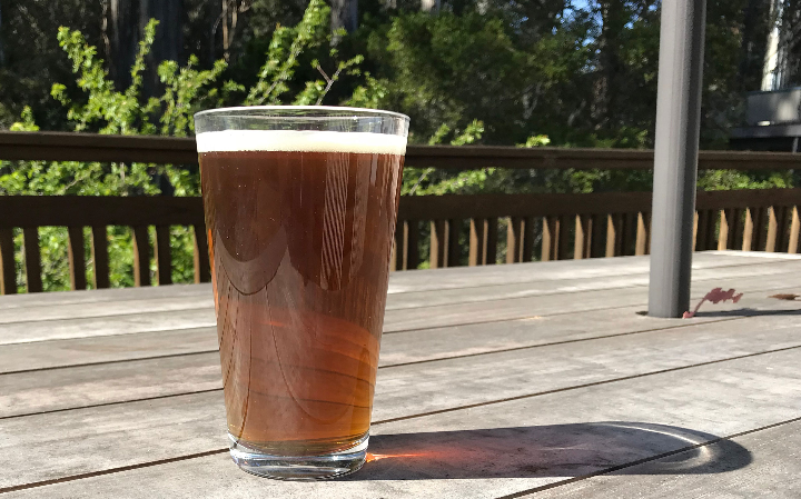 Beer Image for Plague of Kali Rye IPA provided by Mad Zack Brewing
